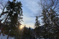 Winter der der Tiroler Zugspitzarena